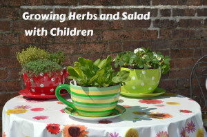 Growing herbs with children