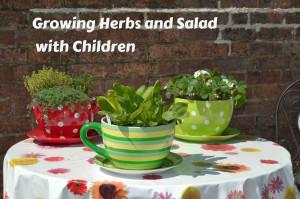Growing herbs with children