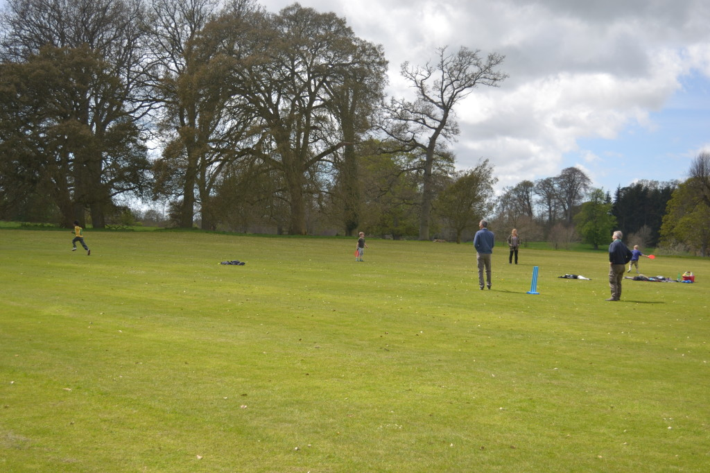 Kingston Lacy cricket
