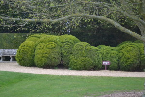 Topiary faces