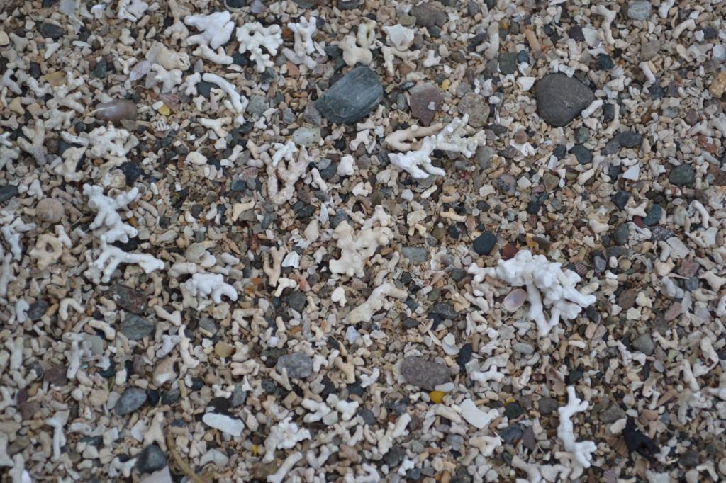 Coral Beach Plockton