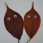 leaf faces