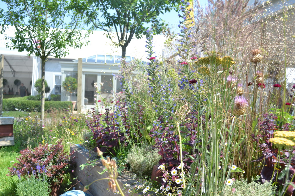 Hampton Court Flower Show - Bee friendly Garden