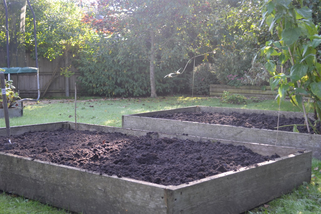 bare vegetable plots