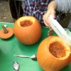 scooped out pumpkins