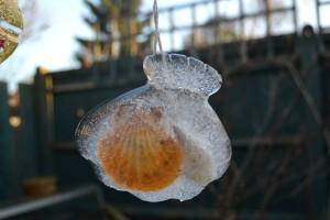ice scultpture