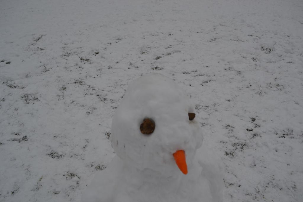 snowjan2013 006