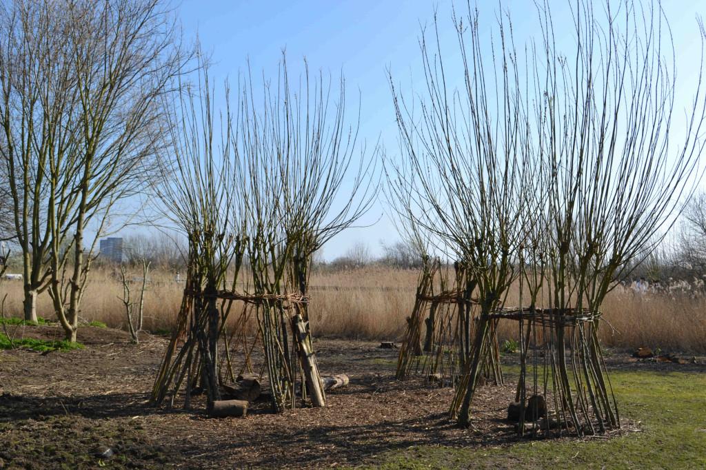willow dens wetlands centre