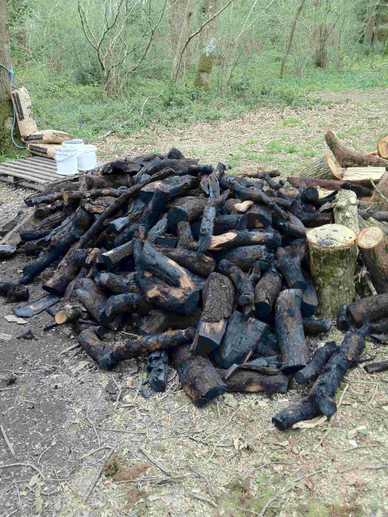 charcoal logs