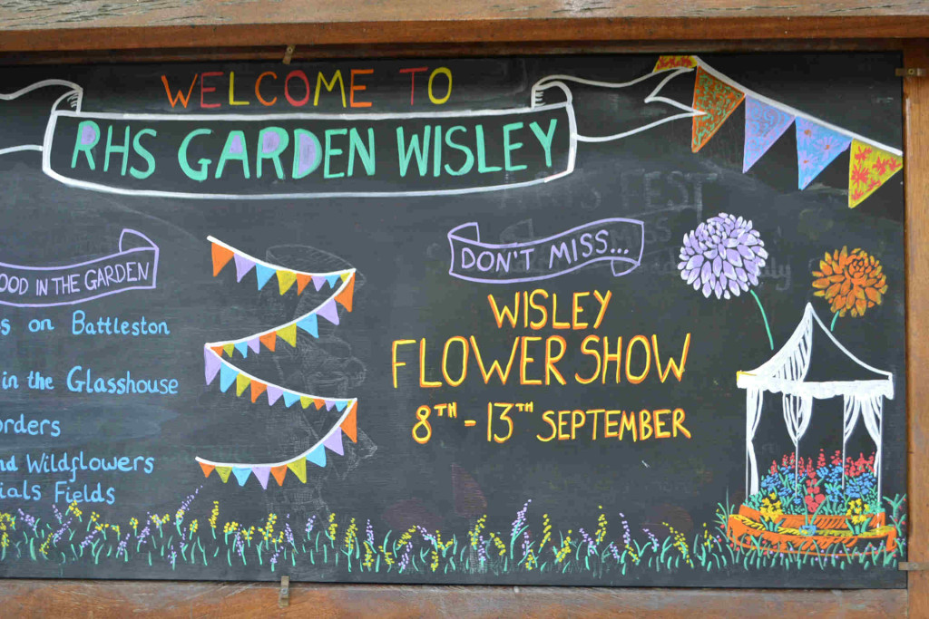 The RHS Wisley Flower Show