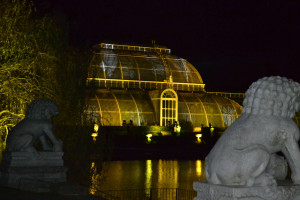 Kew Gardens Christmas lights