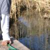ponddipping